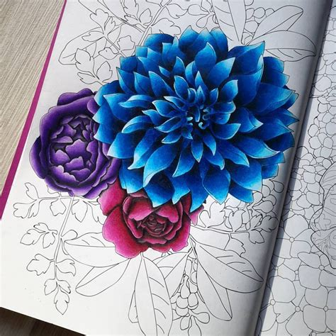 Coloring Flowers With Colored Pencils by Fleurs Wip With My Prismacolor Pencils Arttherapie
