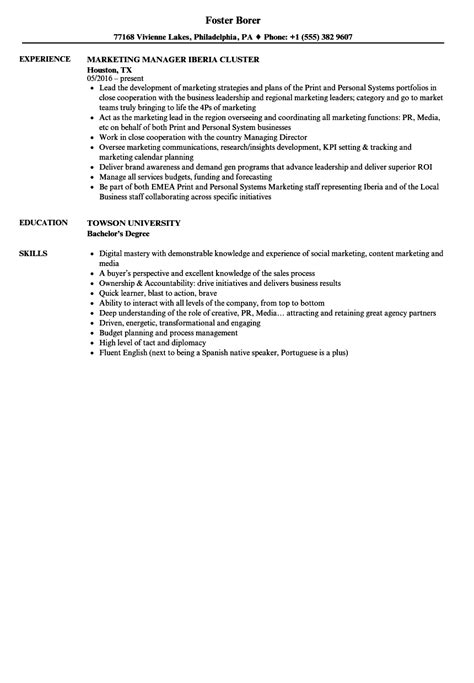 manager resume exle resume exle and free resume