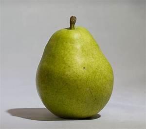 D'Anjou - Wikipedia  Pear