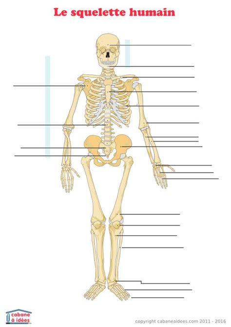 ranger une chambre squelette humain schéma à légender cabane à idées