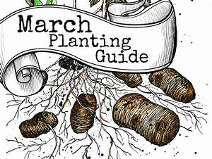 March Planting Guide