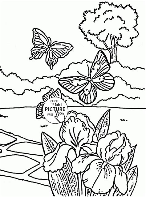 Spring Butterflies Coloring Pages