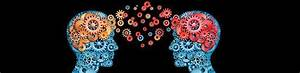 Cognitive Science // Marquette University