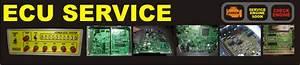 Ecu Service  Jual Beli  Tukar Tambah  Service Ecu Ecm