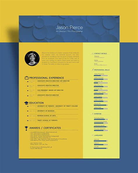 beautiful resume cv template  graphic designer art director good resume