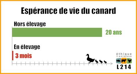 2 foie gras la v 233 rit 233 sur l 233 levage 171 en plein air