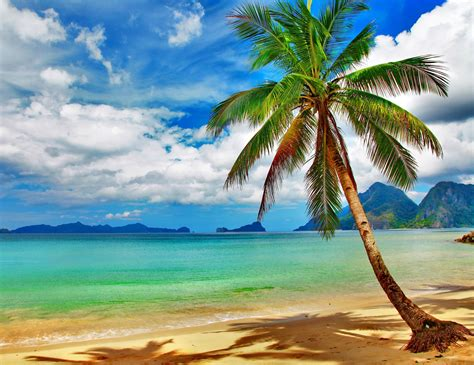 tropical beach desktop backgrounds wallpaper cave