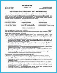 best words for the best business development resume and With best business resume