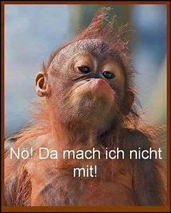 Lustiges Bild Wochenende : pin von el lo auf humor pinterest witzig spr che und lustig ~ Frokenaadalensverden.com Haus und Dekorationen