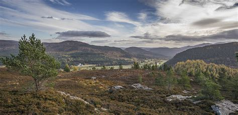 Scenery Picture by Landscapes Scenery Cairngorms National Park Authority