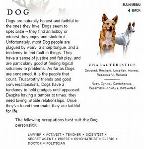 English Essays Examples Essays On Service Dogs  Paragraph Essay Format Sample Of English Essay also Example Of A Good Thesis Statement For An Essay Essays On Dogs Essay Over Population Descriptive Writing On Dogs  Argumentative Essay Examples For High School