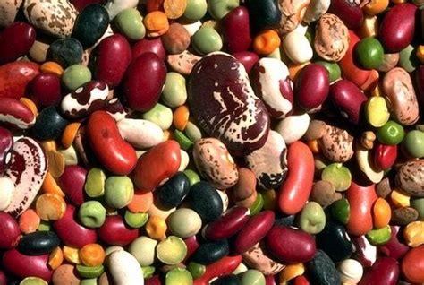 alimentazione contro il colesterolo alimentazione per colesterolo quali cibi assumere e quali