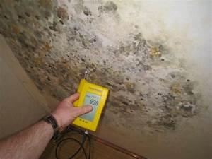 Wand Feuchtigkeit Messen : nach sanierung unbedingt auf richtige l ftung achten ~ Lizthompson.info Haus und Dekorationen