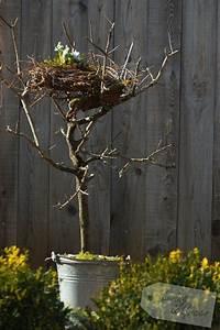 Deko Hauseingang Frühling : ein nest aus birkenreisig nest aus birkenreisig diy deko fr hling u ostern pinterest ~ Orissabook.com Haus und Dekorationen