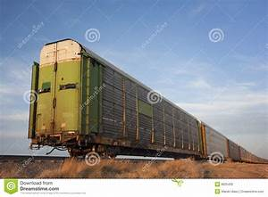 Train Of Rail Cars For Livestock Transportation Stock ...