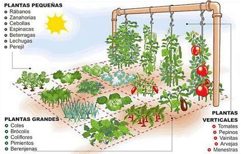 Sistema Simples Permite Plantar Horta Variada Em Apenas Um