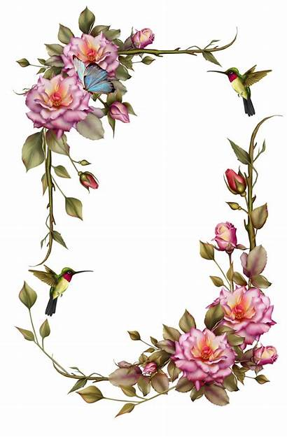 Clipart Corner Floral Transparent Google Webstockreview Decoupage