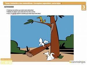 Ficha de matemáticas para niños Concepto cerca y lejos