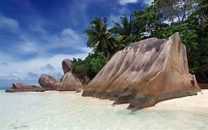 Beach sand rock palms tropical wallpaper