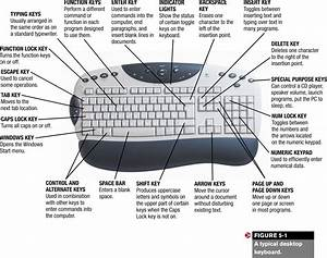Best Photos of Function Keys On Keyboard Meaning ...