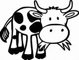 Cow Coloring Animals Printable Funny Grass Outline Farm Animal Eating Cows Cartoon Sheets Sheet Zoo Games Face Wecoloringpage Crafts Coloringgames sketch template
