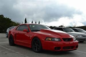 Ford Mustang Terminator [3456x2304] [OC] : carporn