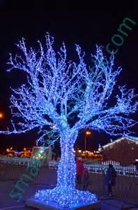 Christmas Tree Lights Outside