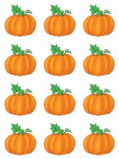 Pumpkins Pumpkin Teacher Accents Stickers Created Resources