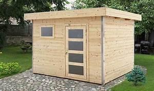Abri De Jardin Moins De 5m2 : remise de jardin en bois brut 5m2 toit plat et porte vitre ~ Edinachiropracticcenter.com Idées de Décoration