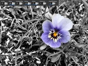Schwarz Weiß Bilder Mit Farbe Städte : psp tutorial schwarz wei bild mit farbe tutorials foto video webmaster ~ Orissabook.com Haus und Dekorationen