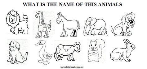 animal worksheet new 597 animal worksheet kindergarten