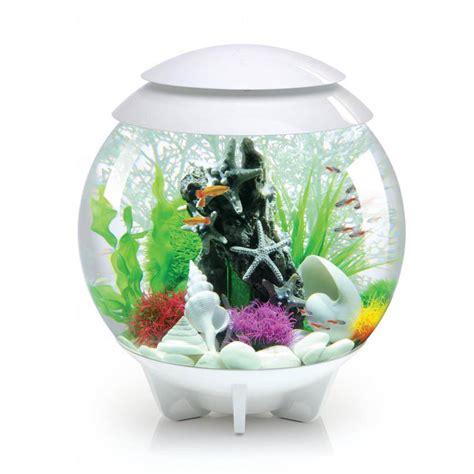 aquarium original pas cher atlub