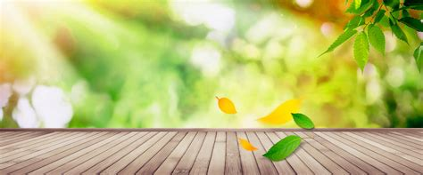 Fresh Backgorund by Green Leaves Wood Background Fresh Literature And
