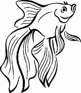 Fish Coloring Drawing Printable Cartoon Simple Betta Tropical Wallykazam Getdrawings Bestappsforkids Fishbowl Pout Educative Clipartmag Clip Outline Getcolorings Fighting Japanese sketch template