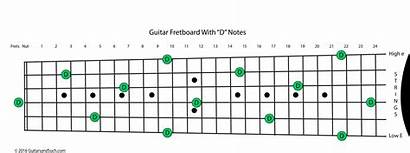 Guitar Notes Fretboard Frets Numbered Learning Named