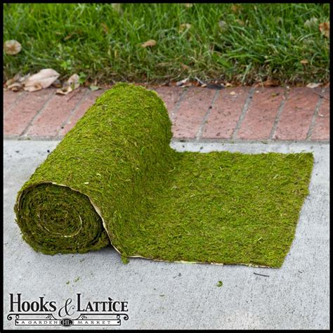 preserved moss sheets for gardening crafts hooks lattice