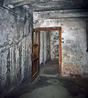 auschwitz chambre a gaz seconde guerre mondiale infos et debats topik histoire