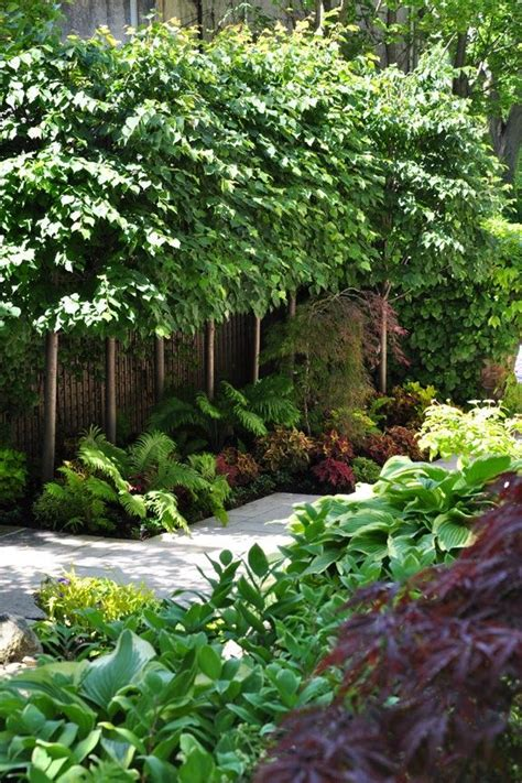 small landscaping plants great landscape ideas color texture small landscape trees keep it watered in birmingham al
