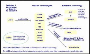 Interface Or Reference Terminology