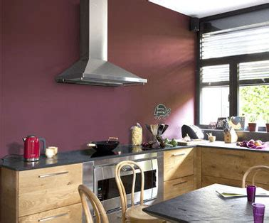 la cuisine br euse de graisses peinture cuisine 11 couleurs tendance à adopter anti