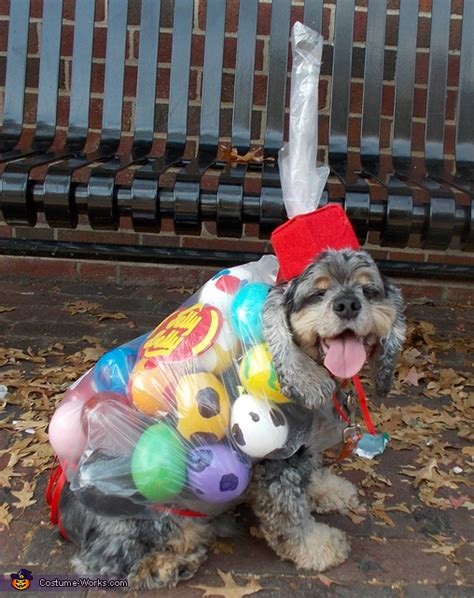 bag  jelly beans dogs costume