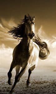 Download 1080x1920 wallpaper running, horse, animal ...