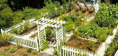 Small Kitchen Colour Ideas - a to z outdoor design guide vegetable patch movato