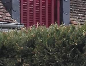Volet Roulant Ne Remonte Plus : quels sont les diff rents types de volets roulants blog de orion menuiserie ~ Melissatoandfro.com Idées de Décoration