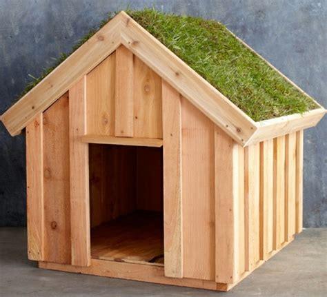 hundehütte aus holz hundeh 252 tte selber bauen ideen