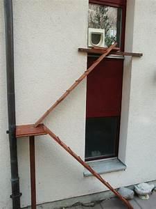 Katzenklappe In Fenster : freilauf ohne katzenklappe ~ Orissabook.com Haus und Dekorationen