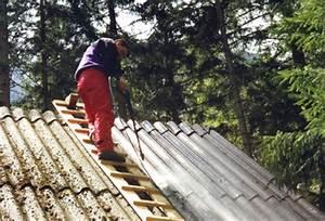 Moos Entfernen Dach : h tte ~ Orissabook.com Haus und Dekorationen