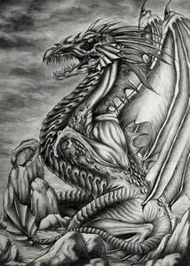 Excellent Pencil Drawings Of Dragon Dragons Pinterest