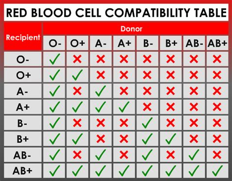 What Are The Rarest Blood Types In The World? Is Yours The. Gamma Knife Brain Tumor Nc Attorney Directory. Immigration Lawyer In Arlington Va. Press Release Word Template Best File Hosts. Fox Dish Network Channel Skype Multiple Video. Child Closet Organization Ideas. Commercial Office Space For Lease. Brand Asset Management Software. Kitchen Renovation Contractors
