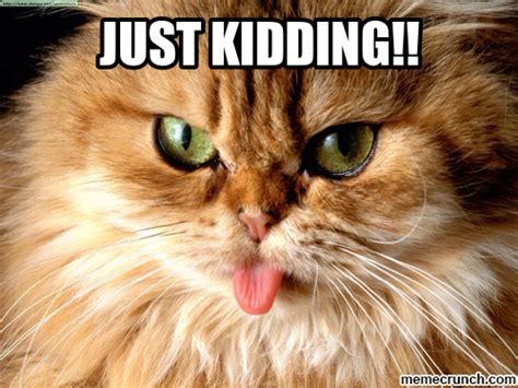 Just Kidding Meme - just kidding meme 28 images just kidding bill is awesome scumbag bill murray quickmeme